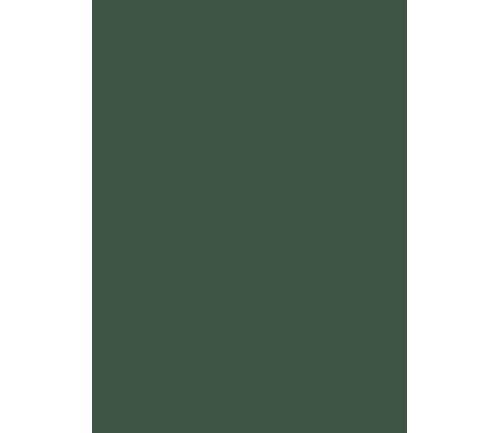 green-latteria-logo-latteria-international-bar
